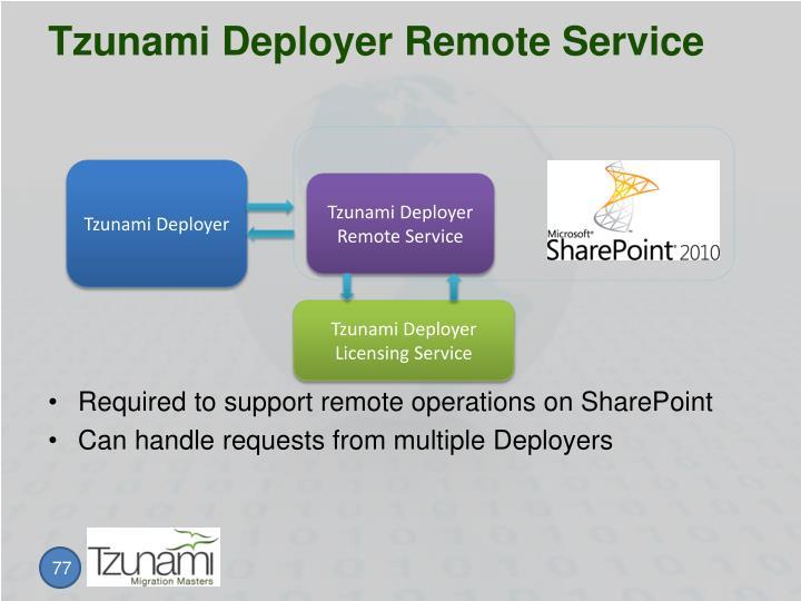 Tzunami Deployer Remote Service