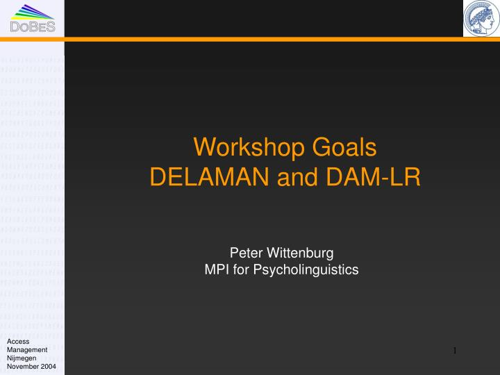 workshop goals delaman and dam lr n.