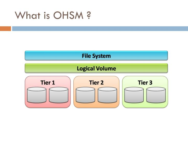 What is OHSM ?
