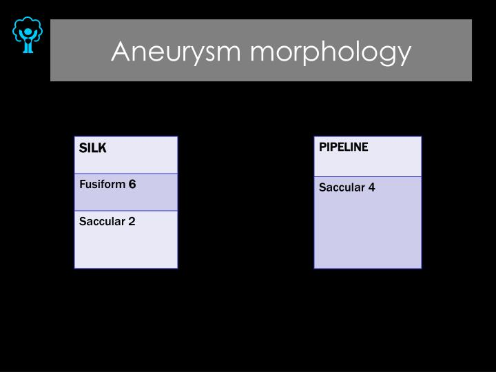 Aneurysm morphology