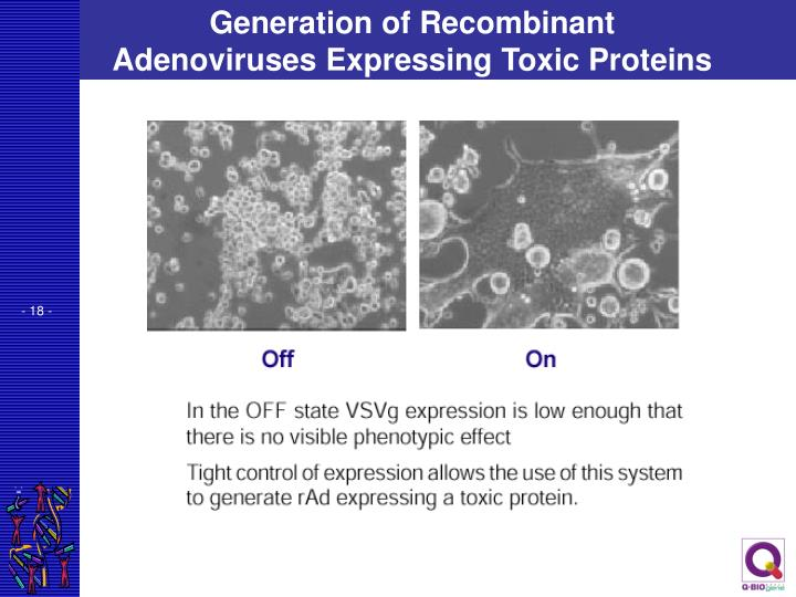 Generation of Recombinant Adenoviruses Expressing Toxic Proteins