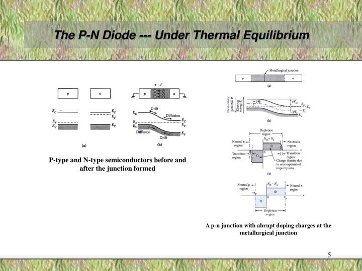 The P-N Diode --- Under Thermal Equilibrium