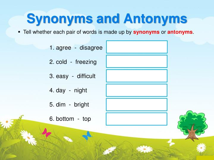 Synonyms and antonyms1