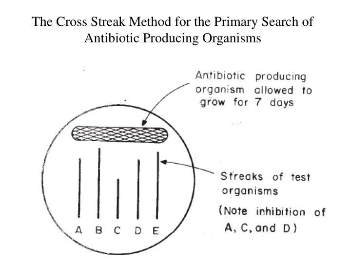The Cross Streak Method for the Primary Search of Antibiotic Producing Organisms