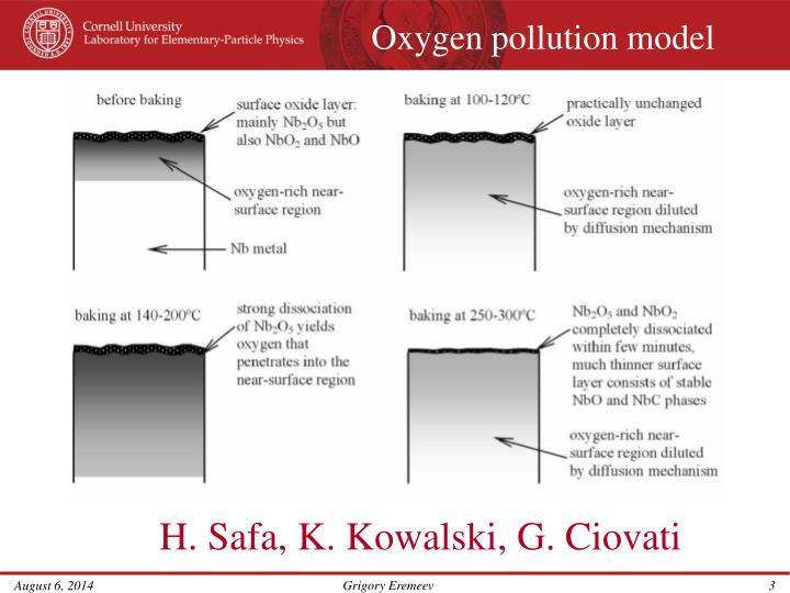 Oxygen pollution model