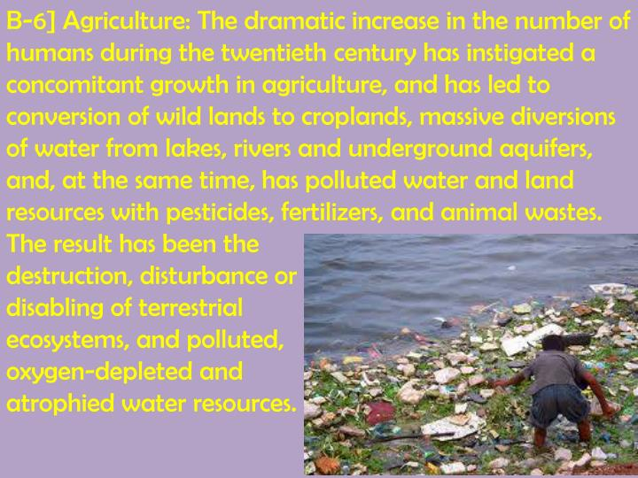 B-6] Agriculture: The dramatic increase in the number of humans during the twentieth century has instigated a concomitant growth in agriculture, and has led to conversion of wild lands to croplands, massive diversions of water from lakes, rivers and underground aquifers, and, at the same time, has polluted water and land resources with pesticides, fertilizers, and animal wastes. The result has been the
