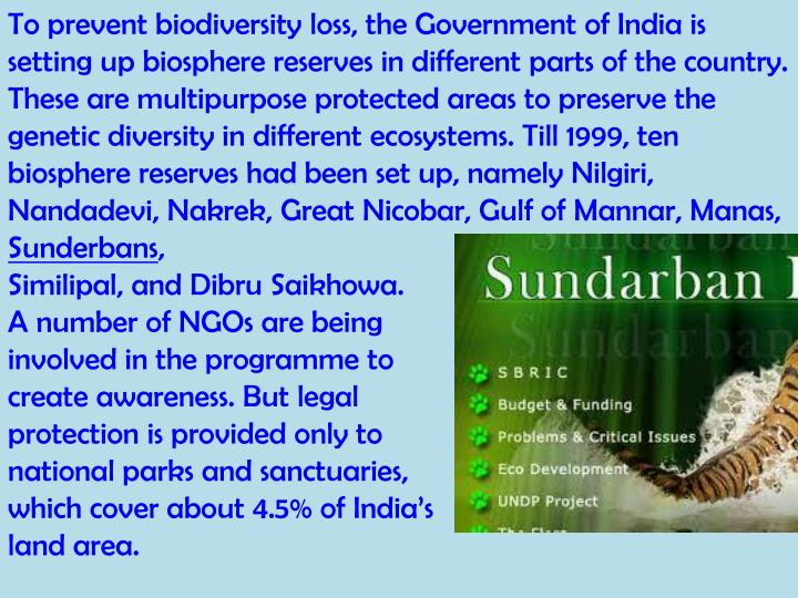 To prevent biodiversity loss, the Government of India is setting up biosphere reserves in different parts of the country. These are multipurpose protected areas to preserve the genetic diversity in different ecosystems. Till 1999, ten biosphere reserves had been set up, namely