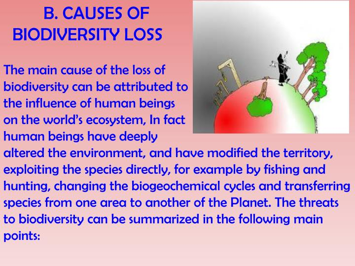 B. CAUSES OF
