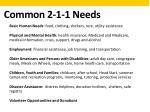common 2 1 1 needs