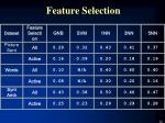 feature selection1