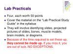 lab practicals