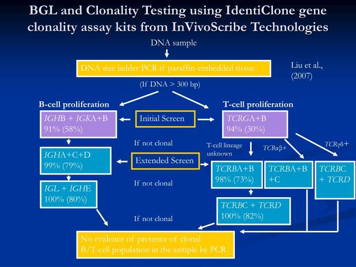 BGL and Clonality Testing using IdentiClone gene clonality assay kits from InVivoScribe Technologies