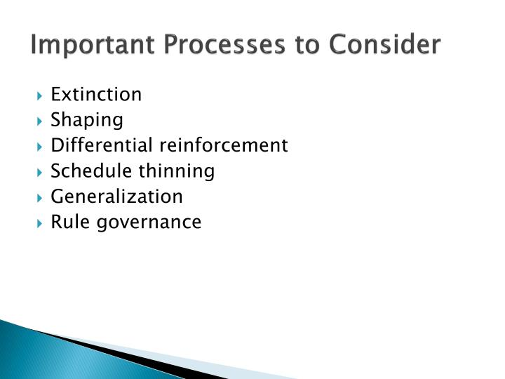 Important Processes to Consider