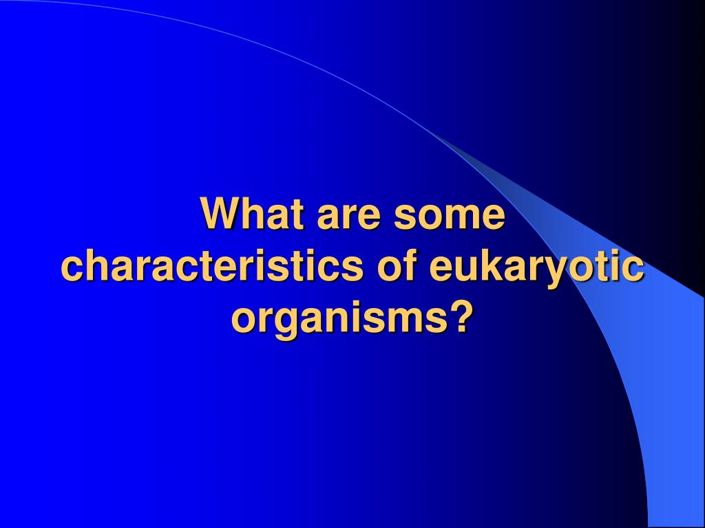 PPT - Eukaryotic Microbes PowerPoint Presentation, free ...