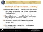 property casualty insurance accounting1