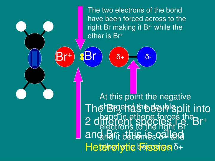 The two electrons of the bond have been forced across to the right Br making it Br