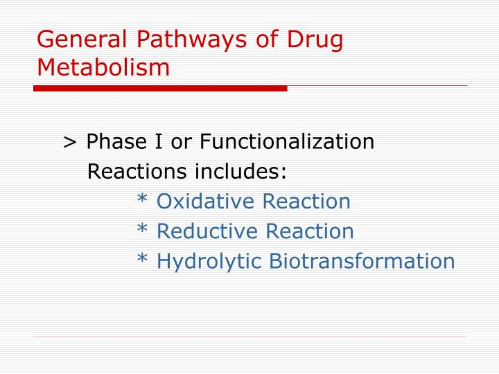 General Pathways of Drug Metabolism