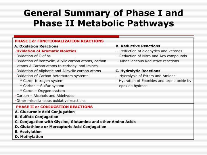 General Summary of Phase I and Phase II Metabolic Pathways