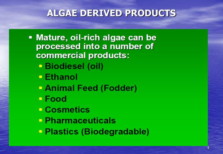 ALGAE DERIVED PRODUCTS