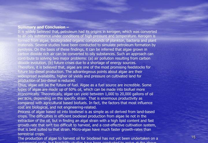 Summary and Conclusion –