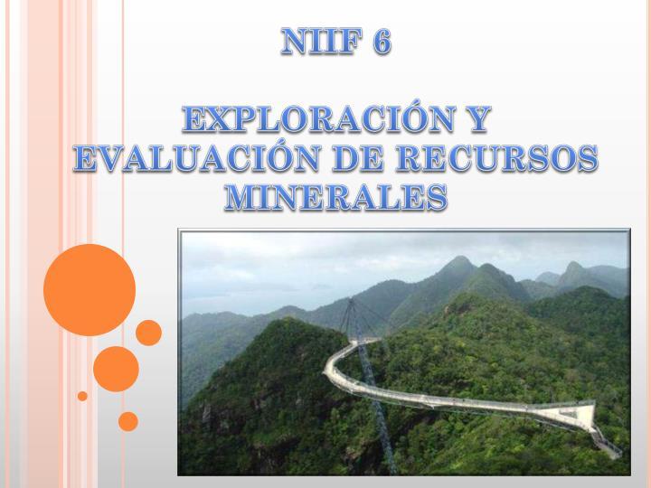 NIIF 6