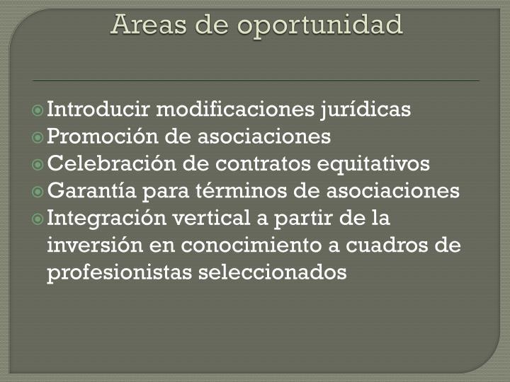 Areas de oportunidad