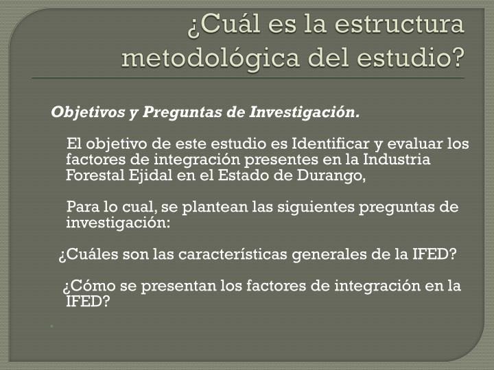 ¿Cuál es la estructura metodológica del estudio?