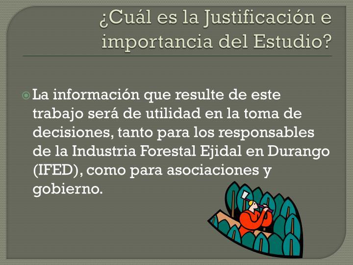 ¿Cuál es la Justificación e importancia del Estudio?
