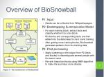 overview of biosnowball
