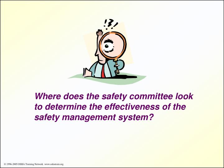 Where does the safety committee look to determine the effectiveness of the safety management system?