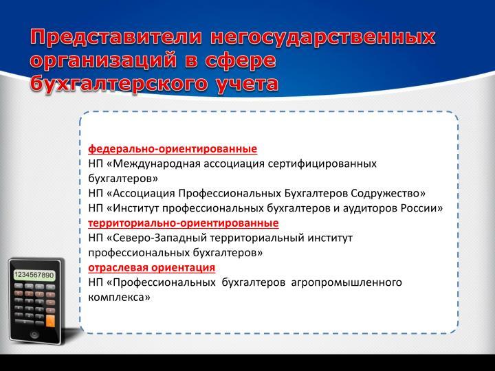Представители негосударственных организаций в сфере бухгалтерского учета