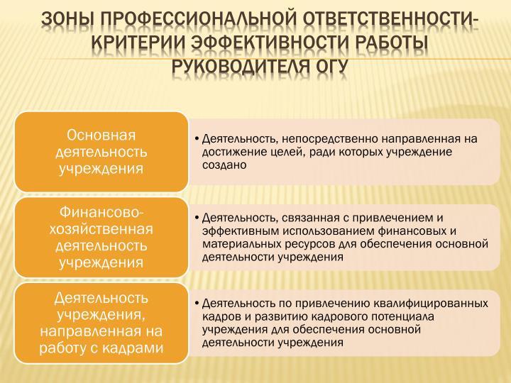 Зоны профессиональной ответственности- критерии эффективности работы руководителя ОГУ