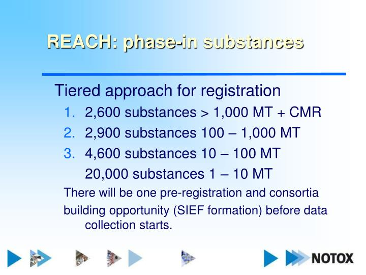 REACH: phase-in substances