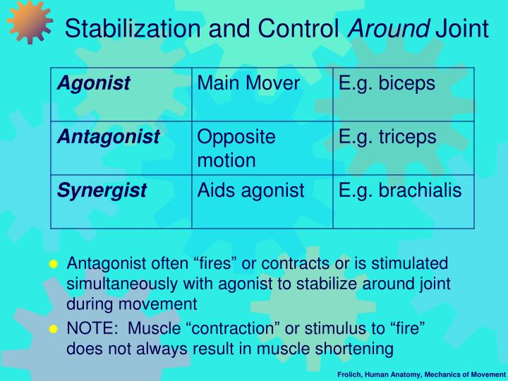 Stabilization and Control