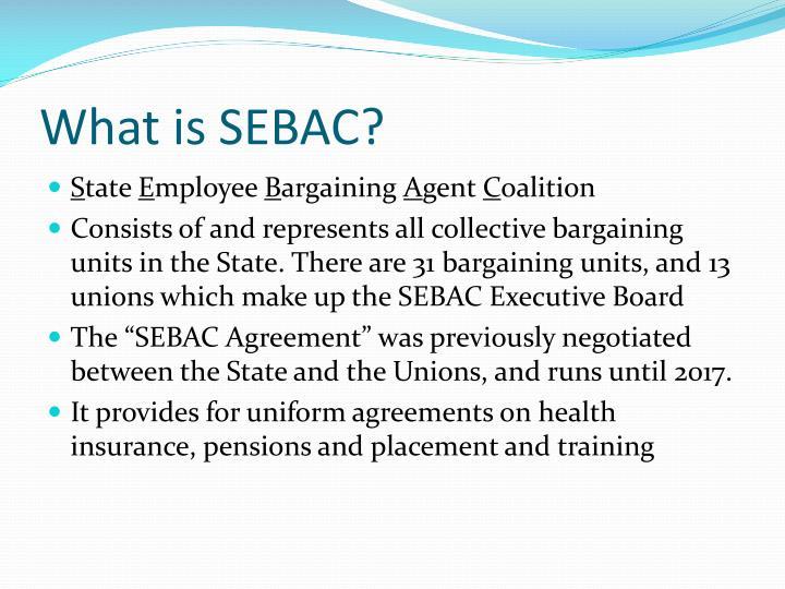 What is sebac