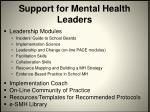 support for mental health leaders