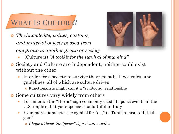 chapter 3 a culture full mutt essay Unique among tannen's books, the argument culture focuses on public discourse - in the press, politics, the law, and education our society has become overwhelmingly adversarial, with consequences not only in our ability to solve problems but also in our personal relationships.