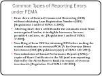 common types of reporting errors under fema