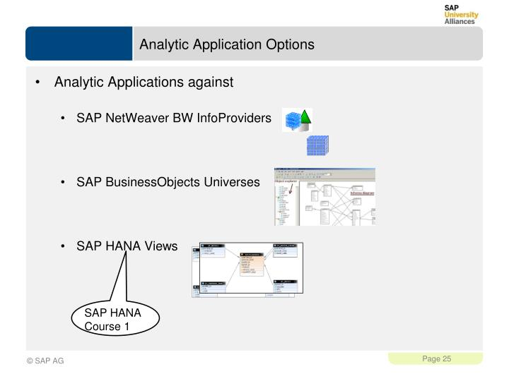 Analytic Application Options