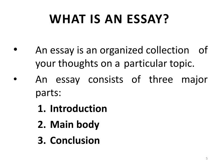 what is a essay The essay from the time i was able to realize what a university was, all i heard from my mother's side of the family was about the university of michigan and the great heritage it has.