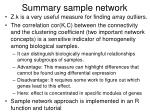 summary sample network