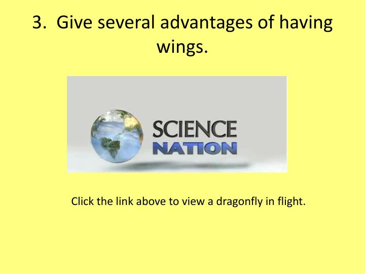 3.  Give several advantages of having wings.