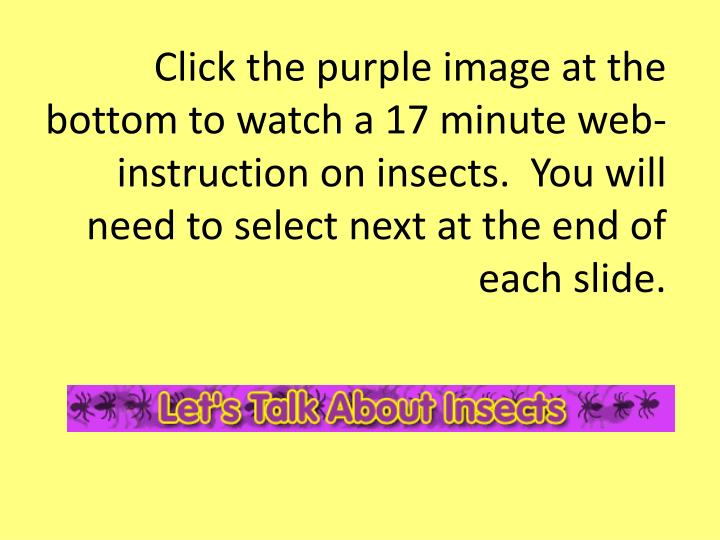 Click the purple image at the bottom to watch a 17 minute web-instruction on insects.  You will need...