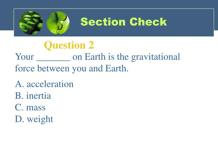 Section Check