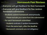 homework peer reviews