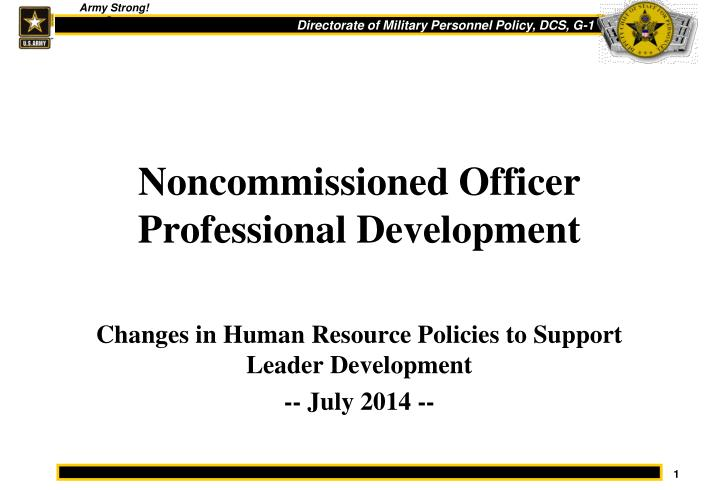 Noncommissioned officer professional development