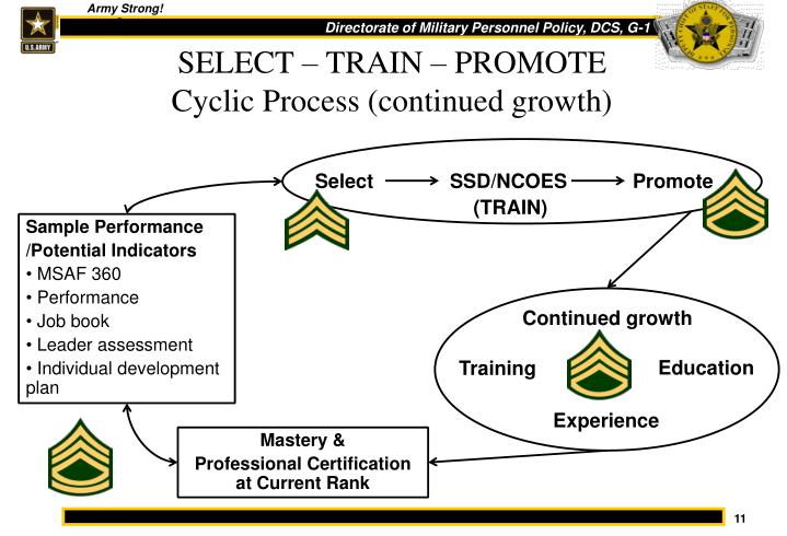SELECT – TRAIN – PROMOTE