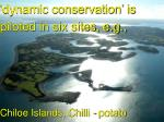 dynamic conservation is piloted in six sites e g chiloe islands chilli potato systems