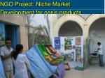 ngo project niche market development for oasis products