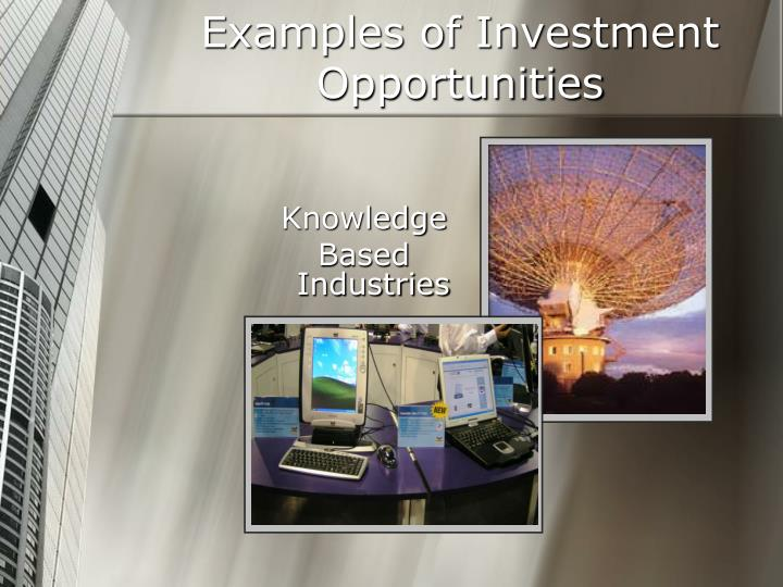 Examples of Investment Opportunities